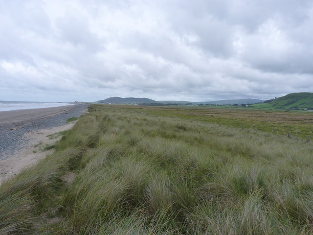 Dunes above the beach