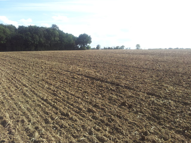 Newly ploughed fields in Ringsfield