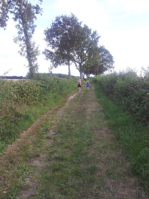 Footpath through farmland in Ringsfield