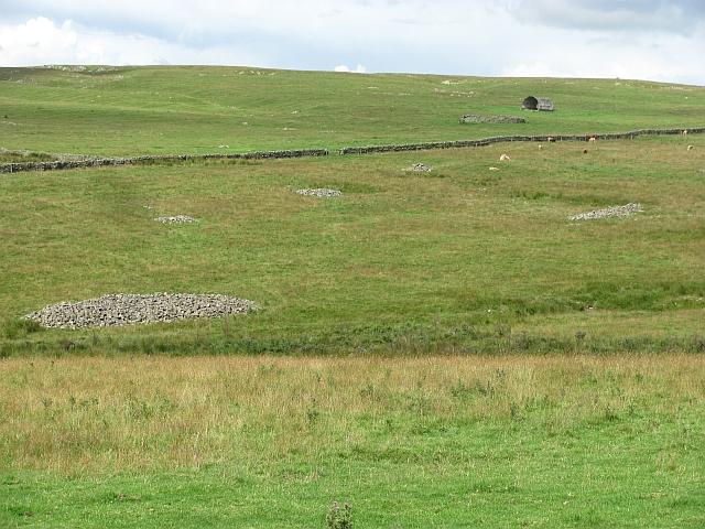 Farmland, Spott Burn