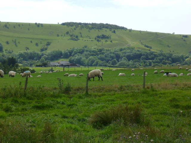 Grazing land west of Poynings