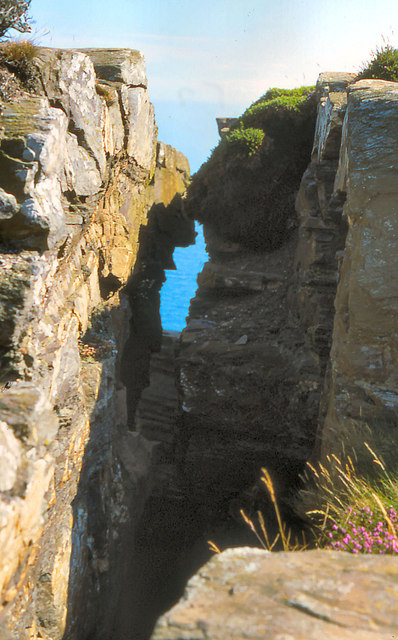 The Chasms