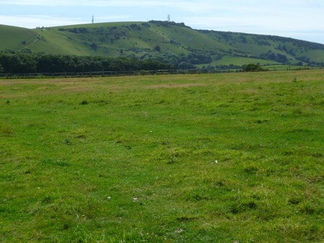 Field near Perching Sands Farm