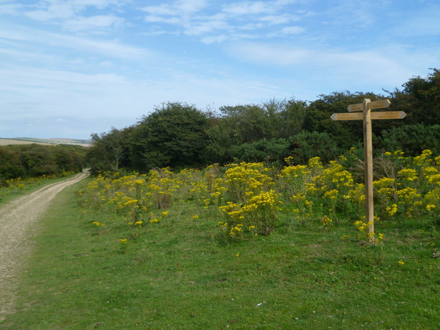 New signpost on the South Downs Way