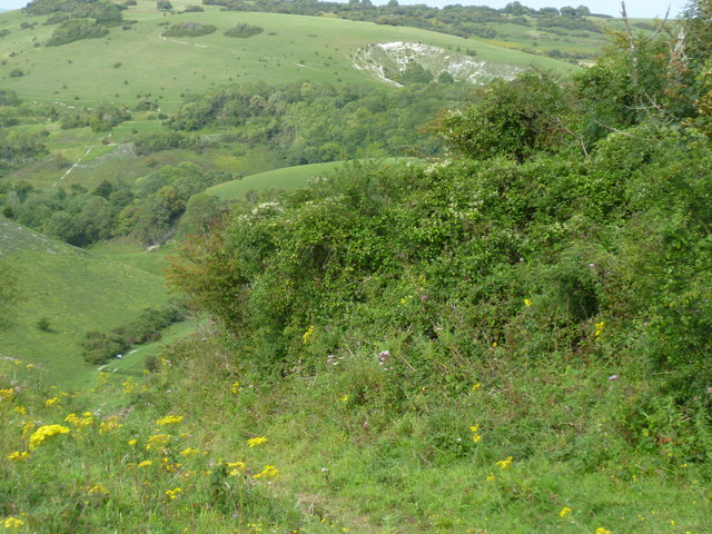 Disused pit on North Hill
