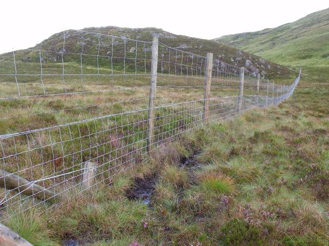 Boundary fence of Loch Lomond National Park heading east
