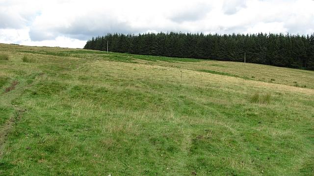 Field by Gairmuir