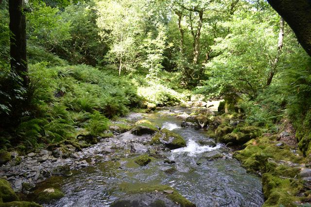 Downstream from Dolgoch Falls