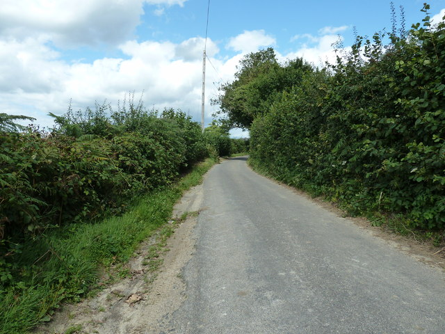 Looking north up Hook Lane by Ludwell Farm