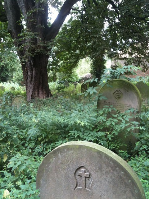 Overgrown graveyard, Church of the Ascension, Whixley