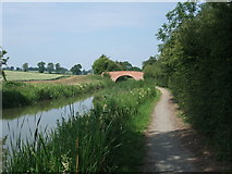 SP7189 : Johnsons Bridge by Tim Heaton