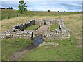 NY8571 : The remains of the Temple of Mithras, near Carrawburgh by David Purchase