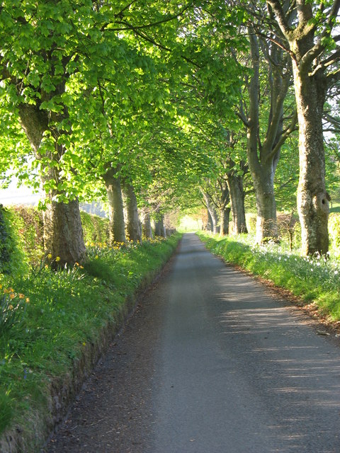 The drive to Foswell