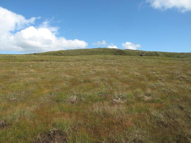 Blanket bog in the Glen Golly Catchment