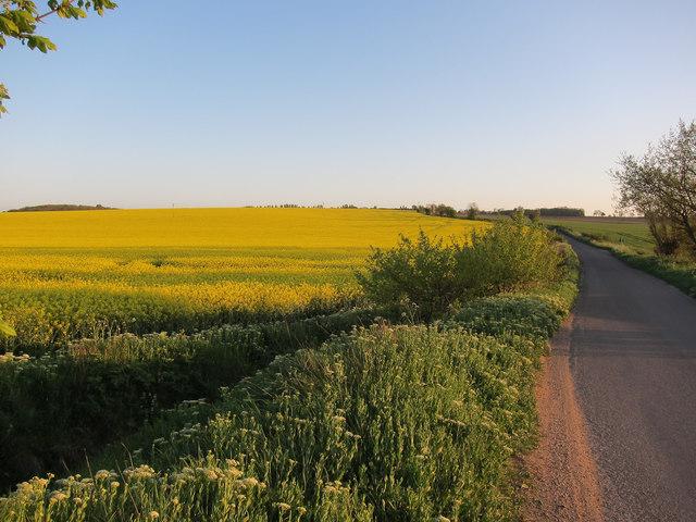 Ashwell Road to Baldock