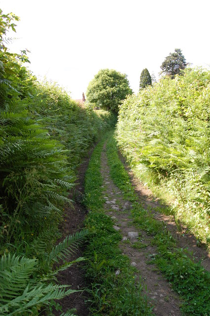 Sunken Lane and bridleway