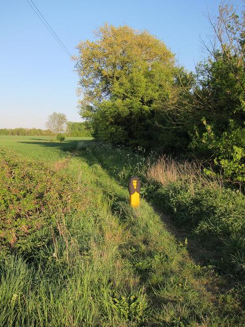Bridleway past Flecks Lane Farm