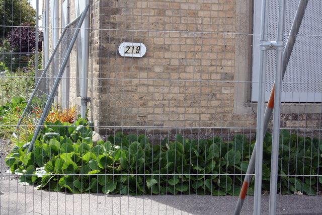 Benchmark on #219 Blandford Road