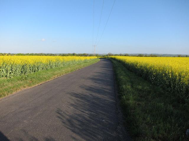 Fen Road