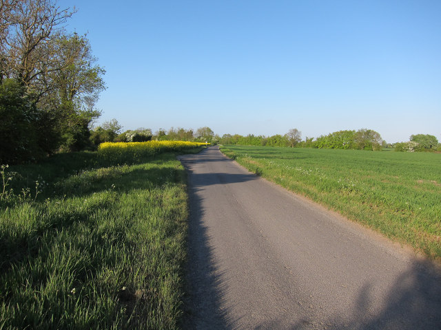 Road out of Abington Pigotts