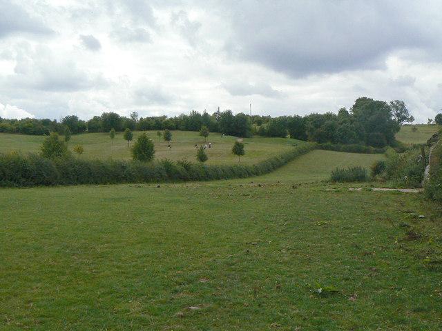 Hillside above Bonner Lane