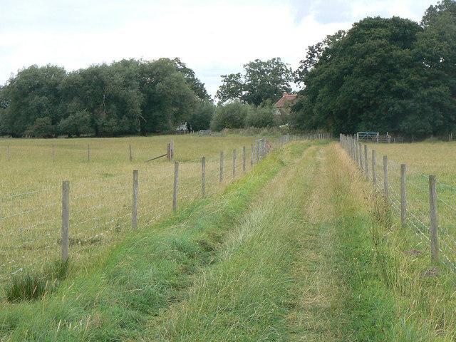 Bridleway near Calverton