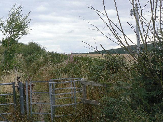 Footpath off Carrington Lane