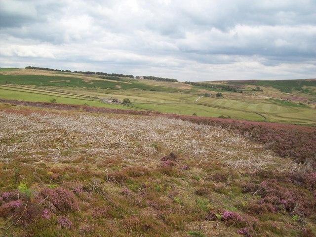 Access Land on Derwent Moors