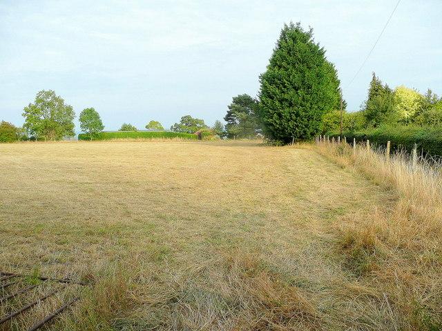Parched field, Woolridge