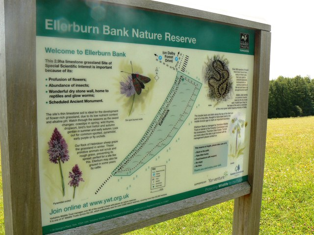 Ellerburn Bank Nature Reserve