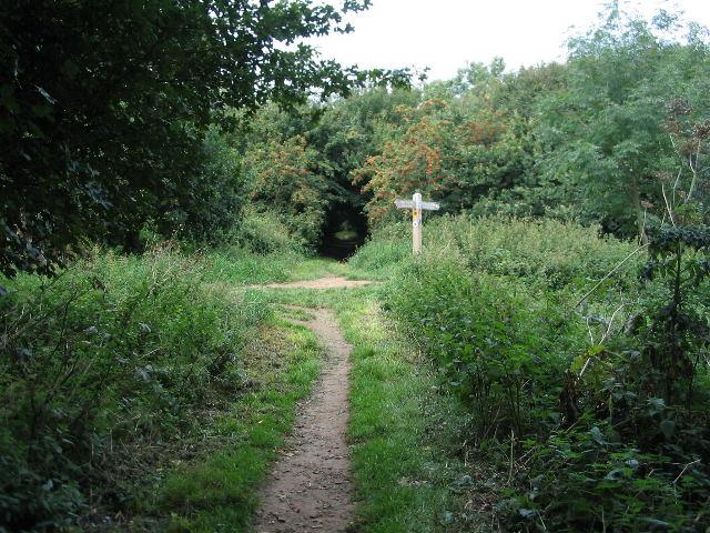 Footpath crossroads