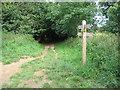 TG1941 : Norfolk Coast path by E Gammie