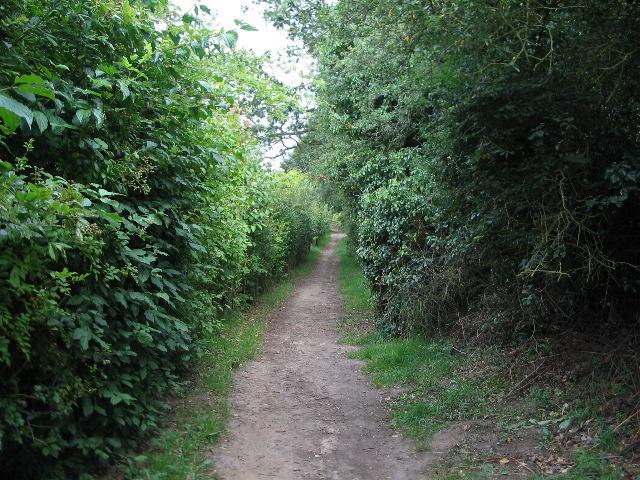 Norfolk Coast path