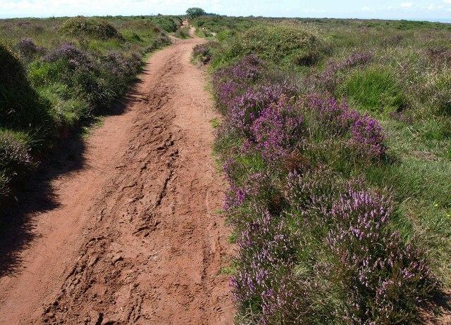 Path near Beacon Batch