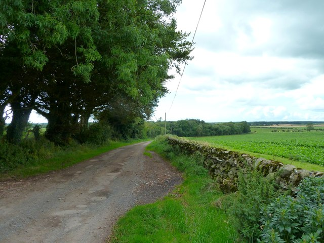 Road to Outtle Well Plantation