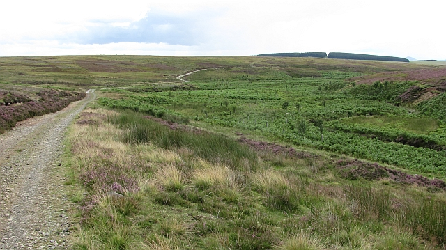 The upper Blythe Water