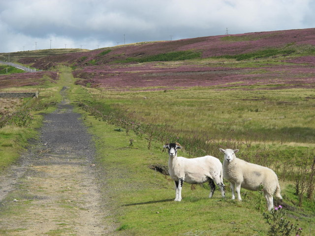The Weatherhill Incline on Bashaw Rigg