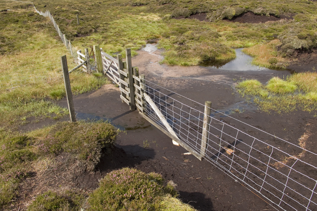 Gate in the watershed fence Saddle Fell