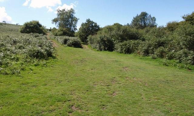 Paths near Ellick House