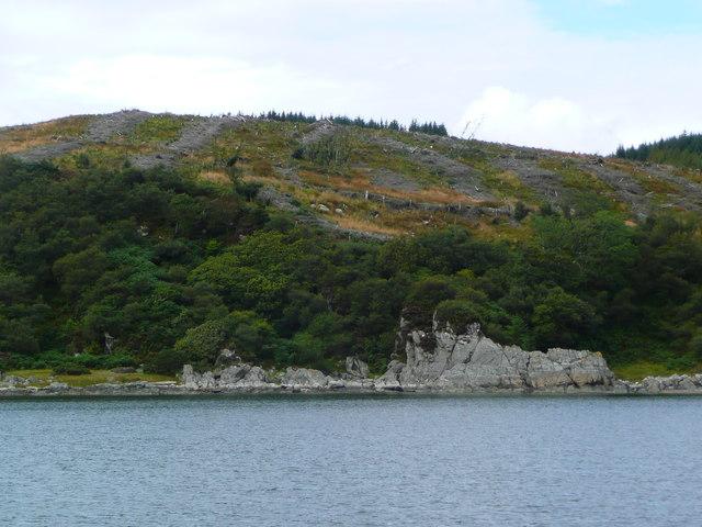 Clear felling above Eilean Grianain