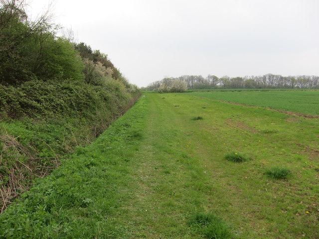 Footpath past Hare Wood