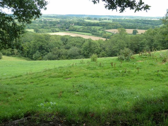 Looking east from Hammingden Lane