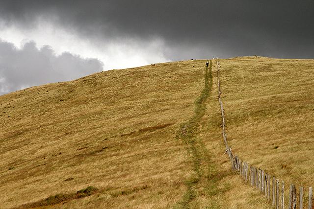 A grass track on Coran of Portmark