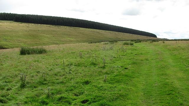 Track south of Braidshawrig