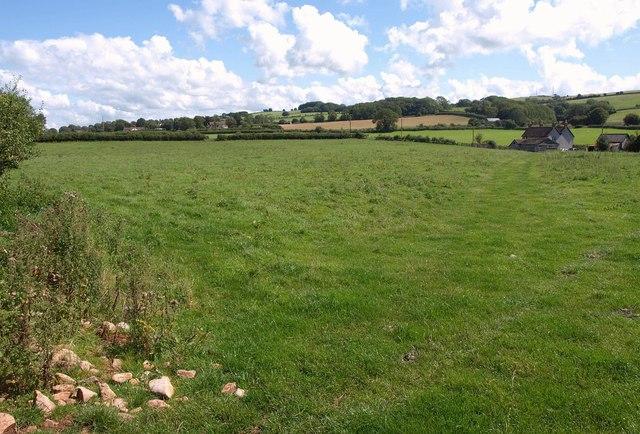 Field, Lower Ellick Farm