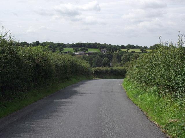The lane to Samlesbury Bottoms