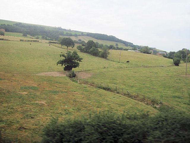 Farm land and stream towards Sale Lane