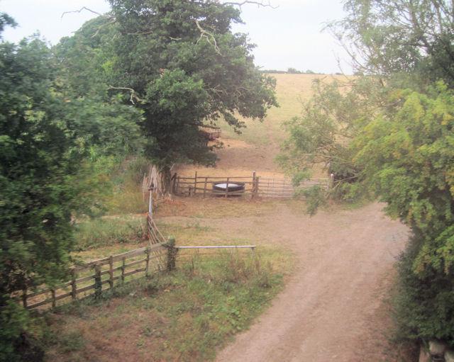Farm track at Cruckmeole