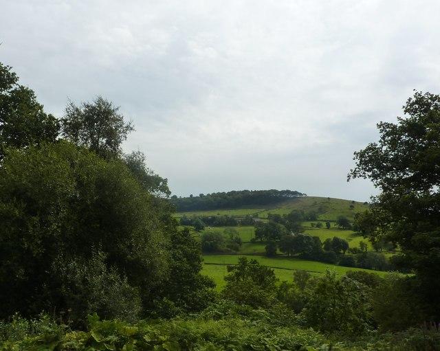 Blaze Farm in the distance