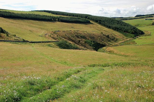 The Lauder Burn below Woodheads Hill